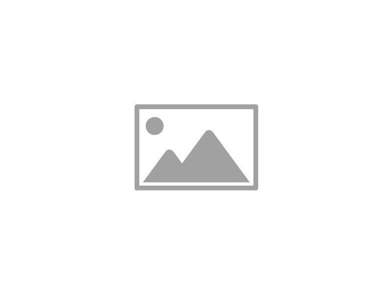 PLAYMOBIL ® The Movie 70075. Food Truck Del'a
